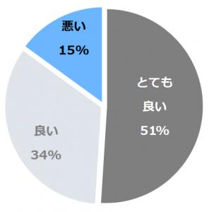 ANAインターコンチネンタル万座ビーチリゾート口コミ構成比率表(最低最悪を含む)