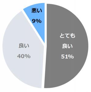 洋風旅館ぴのん口コミ構成比率表(最低最悪を含む)