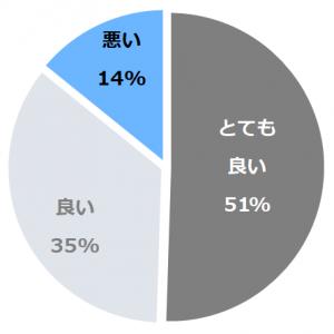 ルネッサンスリゾートオキナワ口コミ構成比率表(最低最悪を含む)