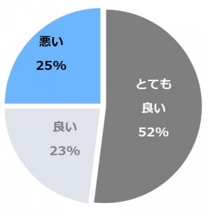 綾ニセコ(あやにせこ)口コミ構成比率表(最低最悪を含む)