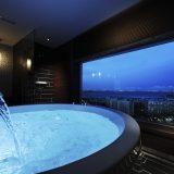 浦安ブライトンホテル東京ベイ(うらやすぶらいとんほてるとうきょうべい)
