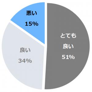 台温泉 やまゆりの宿(だいおんせんやまゆりのやど)口コミ構成比率表(最低最悪を含む)