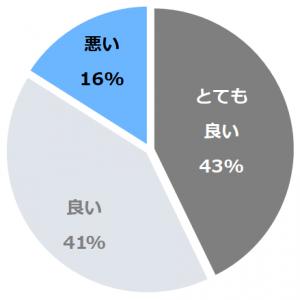 飛騨高山温泉 高山グリーンホテル(ひだたかやまおんせんたかやまぐりーんほてる)口コミ構成比率表(最低最悪を含む)